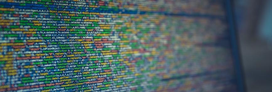 FlexIT Insights: Softwareentwickler und Scrum Master